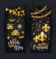 mardi gras gold vertical banners set with a mask vector image vector image