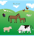 seat of farm animals on a pasture vector image vector image