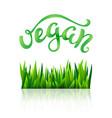 vegan conceptual handwritten phrase vector image vector image