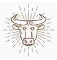 Vintage bull head Hand drawn sketch vector image vector image
