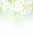 Abstract blur floral paint background vector image vector image
