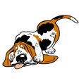 cartoon basset hound vector image vector image