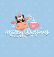 christmas cute cartoon cow with hand drawn vector image