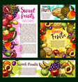 garden and tropical ripe fruits banner vector image vector image