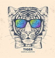 hipster animal dog hand drawing muzzle of tiger vector image vector image