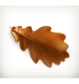 Oak leaf vector image