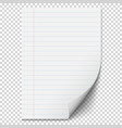white blank paper sheet with lines vector image