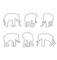 Elephant Set Path on the white background vector image