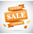 Advertising banner Autumn sale Shop now vector image vector image