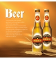 Beer Bottle Background vector image vector image