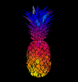 Bright Colorful grunge pineapple vector image