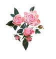 floral design garden flower pink vector image
