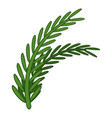 fresh rosemary sprigs icon cartoon style vector image