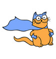 miracle cat in a raincoat is ready vector image