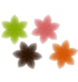Transparent blooming vector image vector image