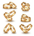 realistic detailed golden wedding rings set vector image