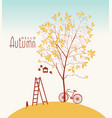banner with autumn tree and inscription vector image vector image