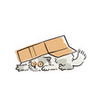funny cartoon cat hiding under a box vector image vector image