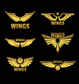 golden wings vector image