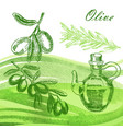 hand drawn olive twig with jar and rosemary on vector image vector image