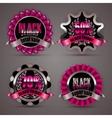 Set of black friday labels vector image