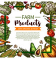 sketch poster of farm organic vegetables vector image vector image
