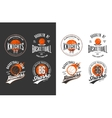 Balls for game of basketball in dark and light vector image vector image