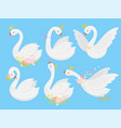 cute princess swan beautiful white swans in gold vector image vector image
