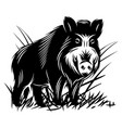 monochrome with a wild boar in vector image