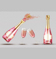 pink champagne explosion bottle and wineglass set vector image vector image