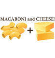 Raw macaroni and cheese vector image vector image