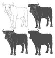 set black and white with a bull vector image vector image