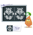 game find 9 differences teddy bear vector image