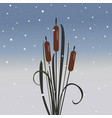 cute bush of reed on modern background decorative vector image vector image