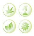 eco icon leaf vector image vector image
