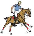 equestrian polo sport