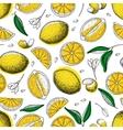 lemon seamless pattern drawing vector image