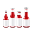Set of Glass Ketchup Bottles different Shapes vector image