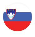 Slovenia flag vector image vector image