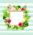 summer tropical frame with flamingo vector image vector image
