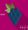 Grape flat icon with long shadow vector image