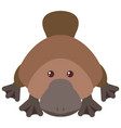 cute platypus on white background vector image vector image