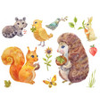 cute watercolor forest animals vintage fluffy vector image