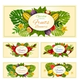 Exotic tropical fresh fruits banners set vector image vector image