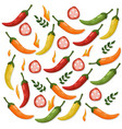 hot chili peppers pattern detailed colorful vector image