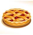 rhubarb pie vector image