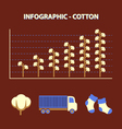cotton infographic vector image vector image