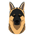 german shepherd avatar vector image