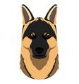 german shepherd avatar vector image vector image