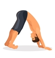 Isolated sporty boy doing downward facing dog pose vector image